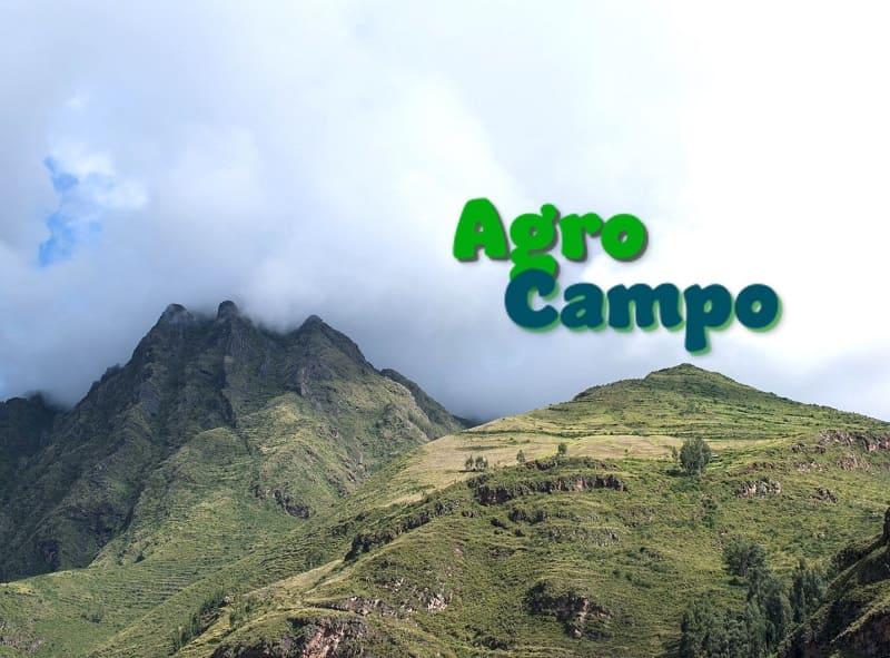 AgroCampo plataforma para agricultores de Cusco