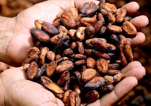 AGQ Labs en el Salón del Cacao y Chocolate 2018
