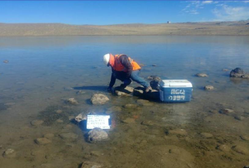 Monitoreos ambientales en estudios de línea base