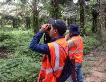 Monitoreos biológicos para el Grupo Palmas