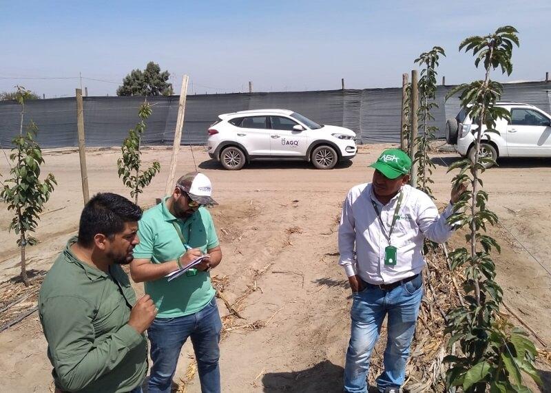 Salidas de campo a empresas agroexportadoras