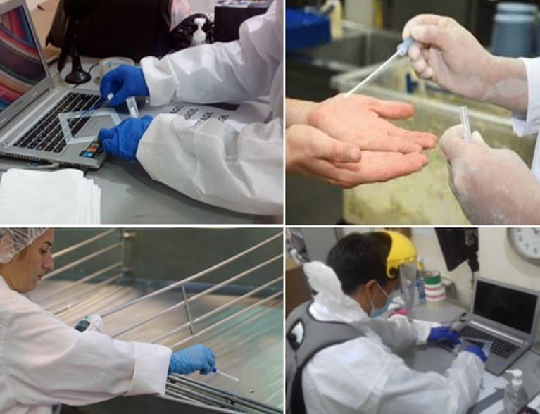 Verificacion de desinfeccion de instalaciones Peru