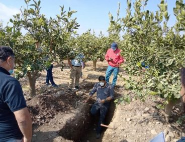 Visitas agronómicas a clientes de Perú