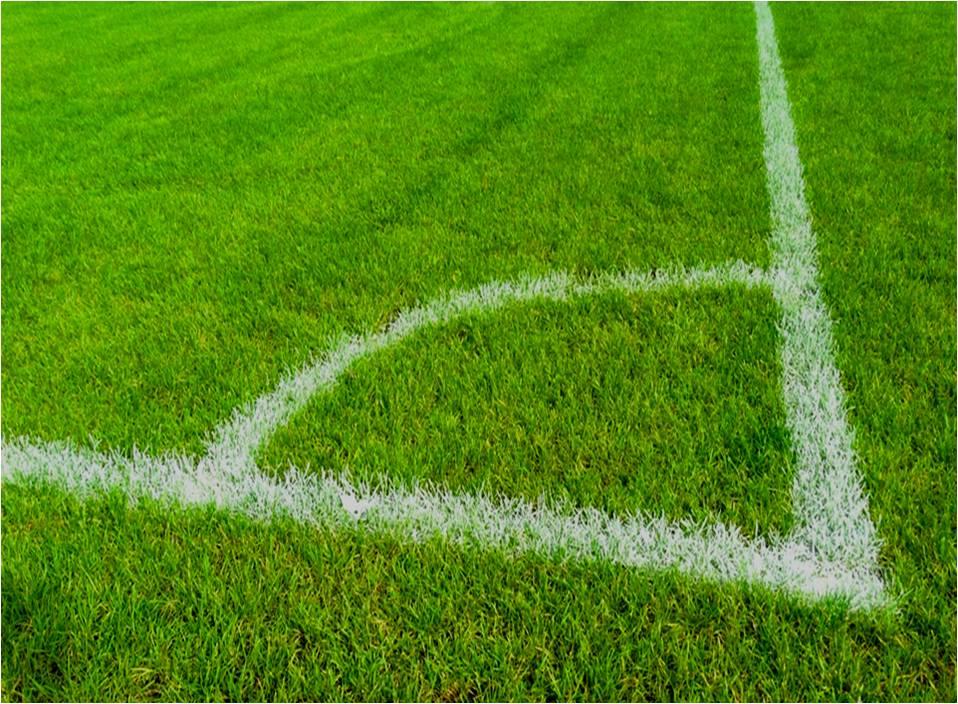 análisis para areas verdes en campos de fútbol